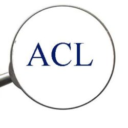 magnifyer_acl